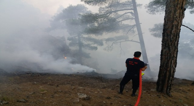 Başkan Büyükkılıç: Yangın, sarp bölgeler olduğu için erişmekte zorlanılıyor, temennimiz daha fazla ilerlemeden sönmesidir