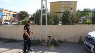 Kayseri polisinden okul bölgelerinde narko-okul uygulaması