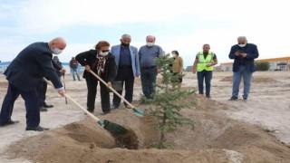 Daha yeşil Kocasinan için yeşil alanlara sonbahar bakımı